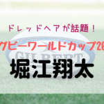 gazou-horie_shota.jpg