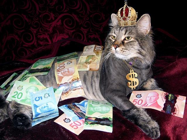 王冠をかぶり、お金を身にまっとたネコ