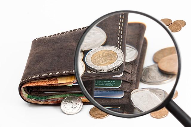 財布を虫眼鏡で拡大している