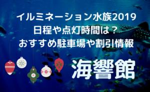 gazou-kaikyokan-illumination.jpg