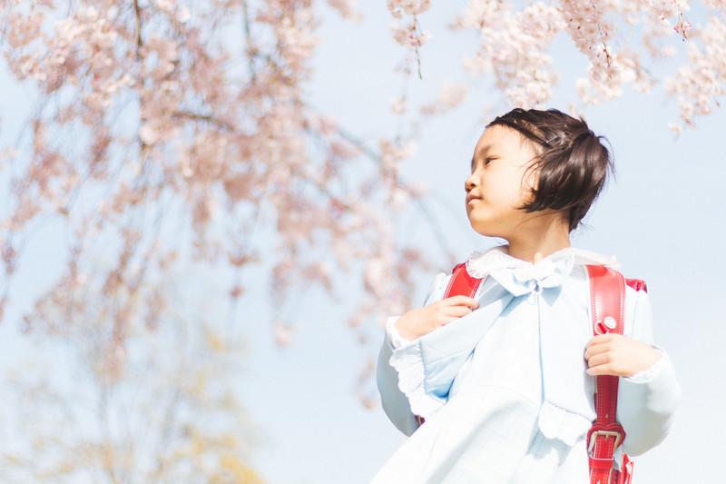 女の子がランドセルを背負って桜の木の下に立っている写真