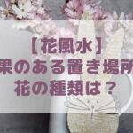 【花風水】花の持つスピリチュアルな効果とは?風水効果のある置き場所や花の種類は?