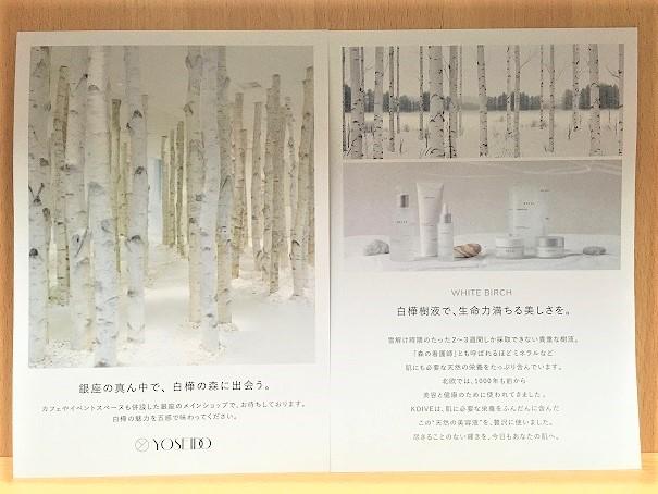KOIVEのブランド紹介のパンフレットの写真