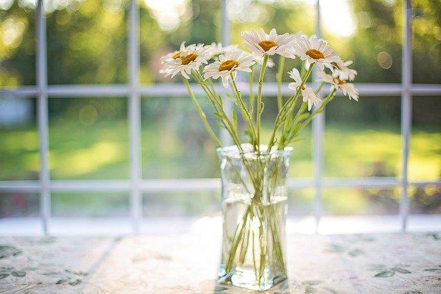 デイジーが花瓶に活けられている写真