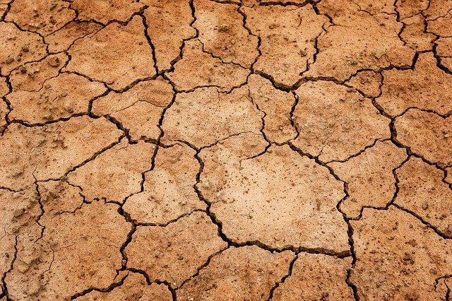 大地g合乾燥してひび割れている写真