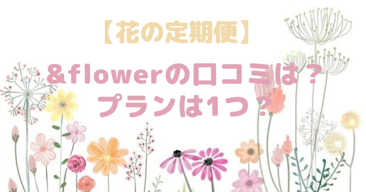 &flower(アンドフラワー)の口コミは?プランは1つ?