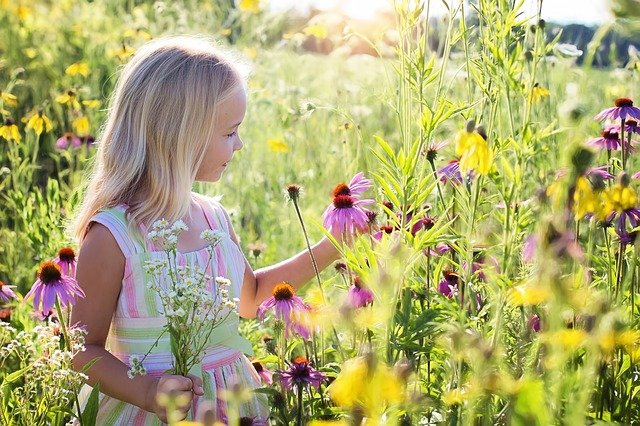 子どもが花を手に取り微笑んでいる写真